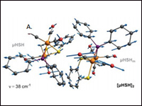 Vibrational characterization of a diiron bridging ...