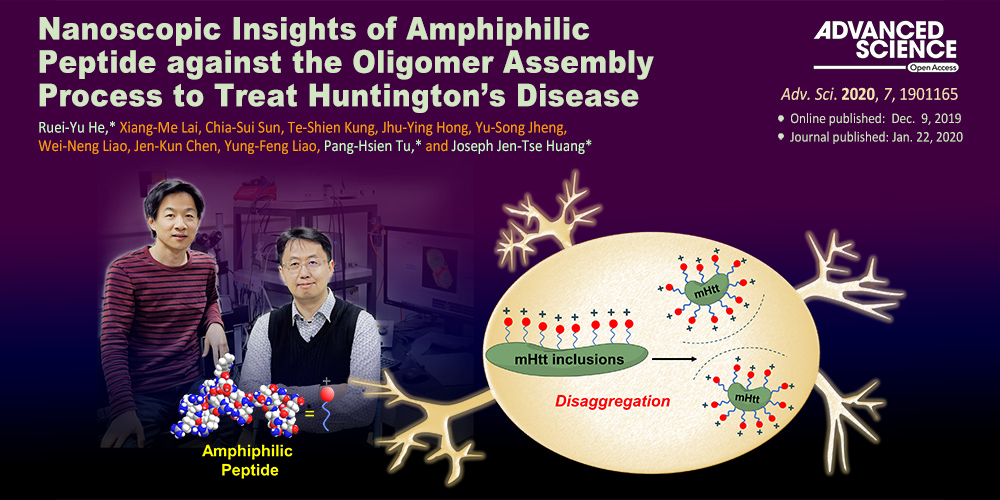Nanoscopic insights of amphiphilic peptide against Huntington's disease