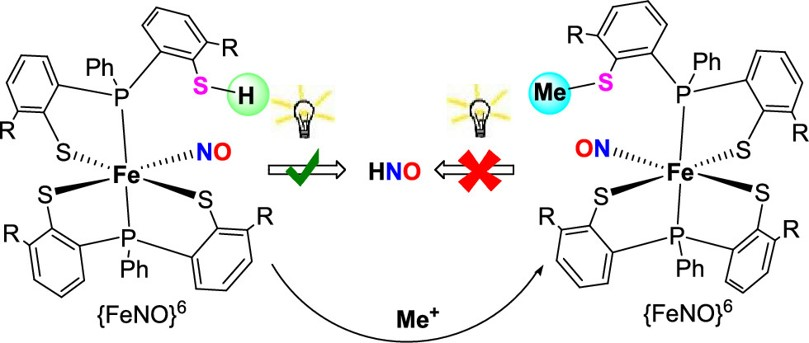 Photoinduced NO and HNO Production from Mononuclear {FeNO}6 Complex Bearing a Pendant Thiol