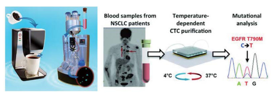Programming Thermoresponsiveness of NanoVelcro Substrates Enables Effective Purification of Circulating Tumor Cells in Lung Cancer Patients